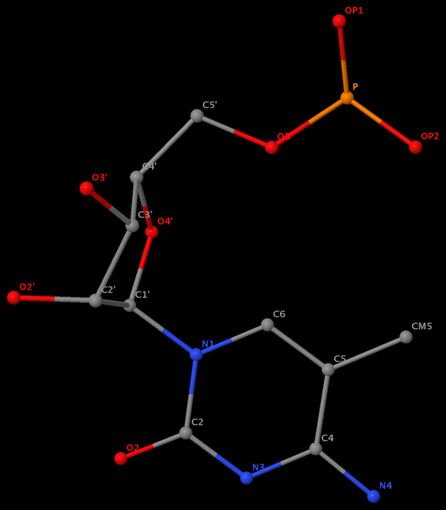 5-methyl in 5MC40 is named CM5 in RNA (1ehz)
