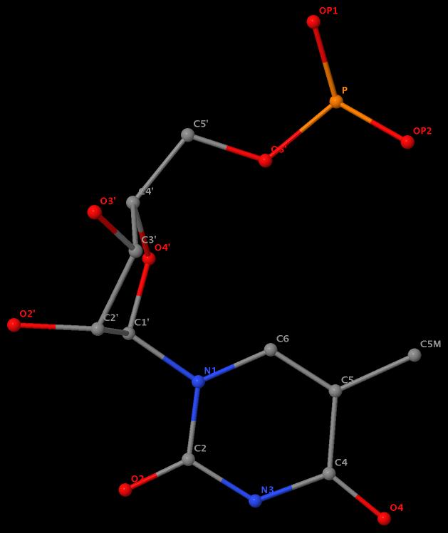 5-methyl in 5MU54 named C5M in RNA (1ehz)
